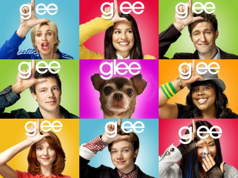 Chanel the Chihuahua on Glee