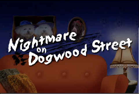 Feature film: Nightmare on Dogwood street